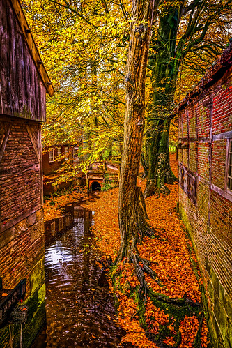 Autumn At The Water Mill