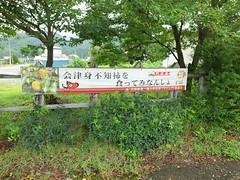 会津身不知柿を食ってみなんしょ