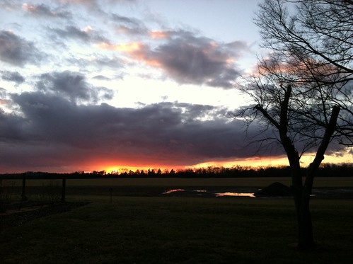 sunset reflection virginia farm brandystation