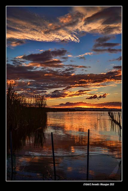 Ocàs a l'Albufera (l'Albufera in sunset) 67