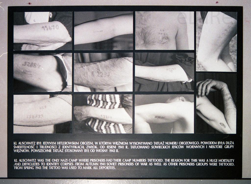 Auschwitz 1 Tattoos Elaref Flickr