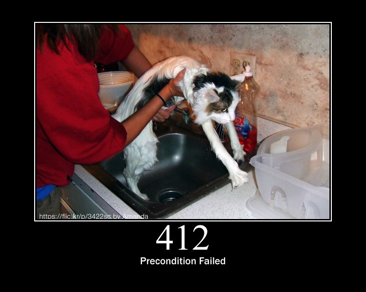 412 - Precondition Failed (RFC 7232) | The server does not m\u2026 | Flickr