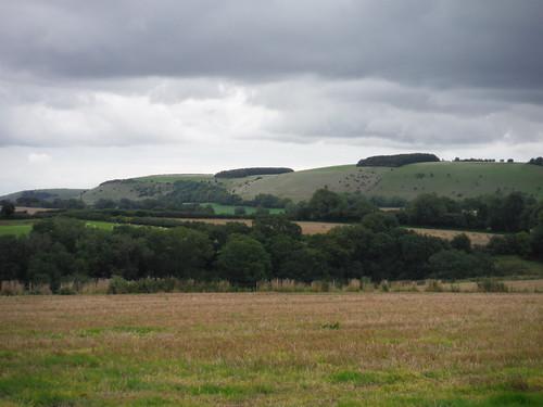 White Sheet Hill from the Wessex Ridgeway SWC Walk 251 Tisbury Circular via Ludwell and Berwick St. John