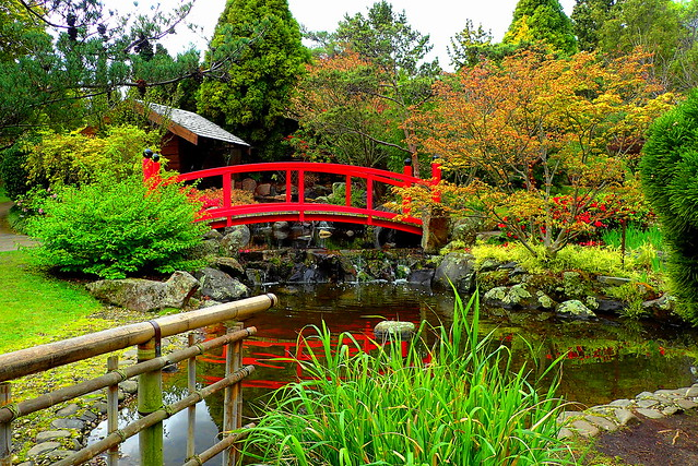 HFF.... JAPANESE GARDEN BRIDGE