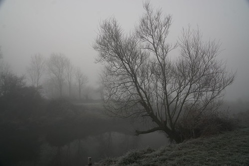 clevedon northsomerset england mist frost morning outdoor outdoors landscape trees grass river riverbank sony a6000 nature
