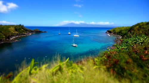 sea seascape colour america boats hawaii unitedstates maui ha lahaina minature tiltshift toytown honoluamokuleiabay sonydslra65