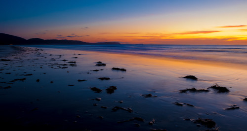 beach blue bluehour coastline evening kapiticoast longexposure marineflora nature newzealand northisland orange paraparaumu paraparaumubeach reflection sand sea seaweed sunset tasmansea twilight wellington yellow nz