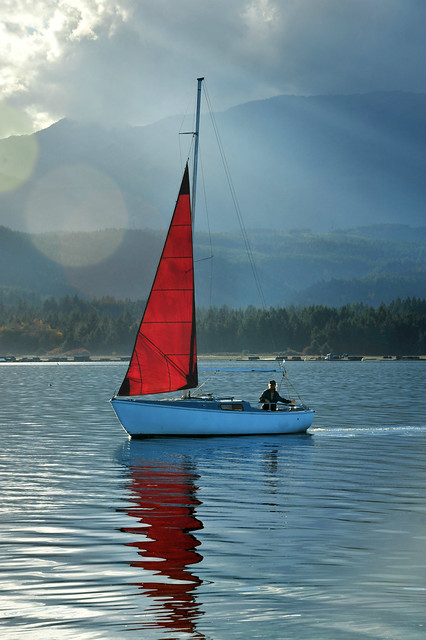The pessimist complains about the wind . . .  the optimist expects it to change . . .  the realist adjusts the sails . . .