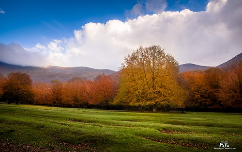 pentax pentaxk5 k5 2016 abulafia ciociaria lazio italia italy colore colors color colori acolori paesaggio paesaggi landscapes landscape montagna montagne monti mounts mountains natura nature bosco wood autunno fall autumn