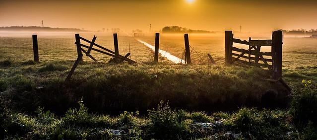 Gate at dawn