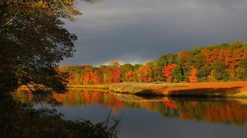 autumn usa fall water river massachusetts scene calm foliage taunton