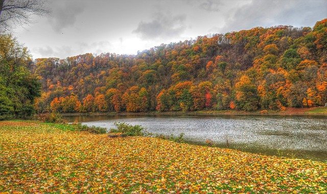 Along the Allegheny River @ East Brady PA