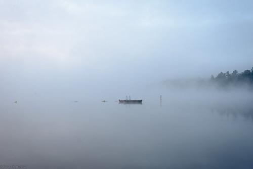morning mist lake water misty fog clouds sunrise d brian foggy august tucker chandos 2015 d610 mistymorning chandoslake briandtucker