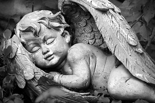 Cherub | by Alexander Day