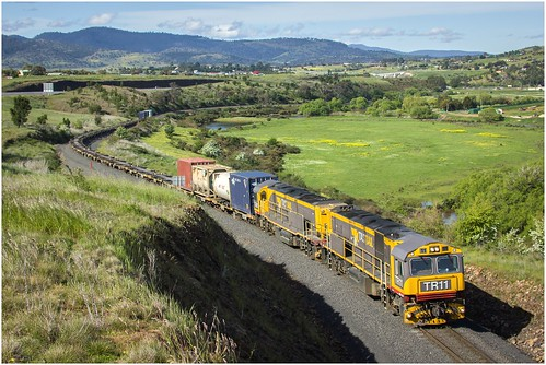australia tasmania tasrail train freighttrain goodstrain trclass tr caterpillar diesellocomotive canoneos550d ef35350mm13556lusm trainsintasmania stevebromley tr11 brighton scenery tasmaniancountryside tasmanianscenery