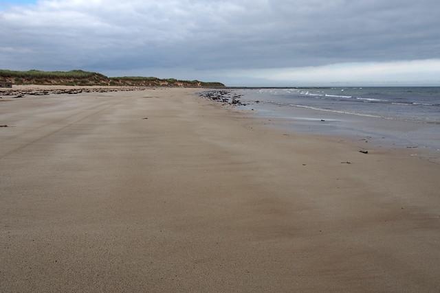 Whitelinks Bay