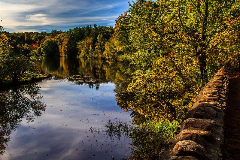 Fall 2015 reflection