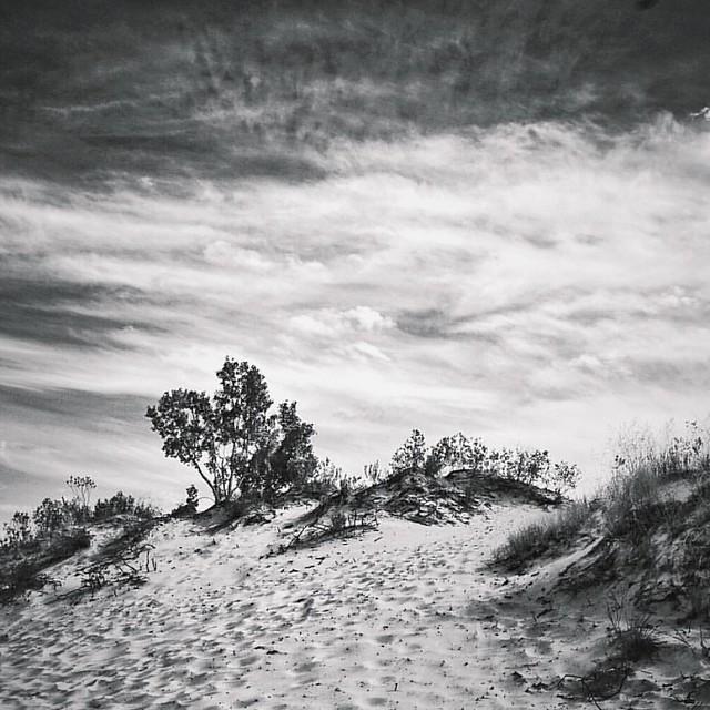 Lake Michigan dunes.  Ludington, mi.  Sony a7mII. Zeiss 16-35mm