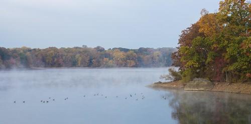 county autumn trees mist lake color fall nature water birds fog october mood reservoir pa delaware newtown geist marple pennsylania delco springton