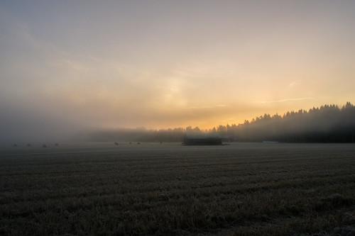 autumn cold beautiful field fog sunrise espoo finland lens landscape dawn frost sony foggy frosty pancake 16mm nex nex5 sel16f28