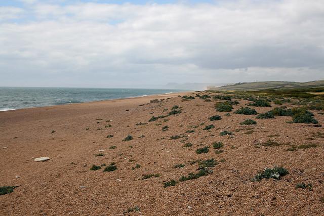 Chesil beach near West Bexington
