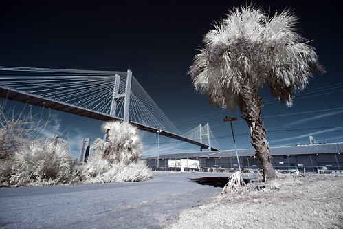 The Talmadge Memorial Bridge and River Street in IR | by budrowilson