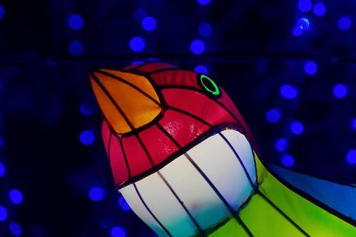 Name: illuminasia-073-20150926