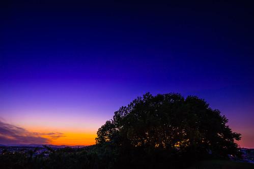 blueandgold inarimaekofun goldenhour yokohama bluehour fe1635mmf4zaoss sky ilce7m2 ancienttomb