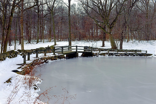 yonkersnewyork yonkers westchestercounty newyork tibbettsbrookpark lakes tibbettslake naturewalks winterlandscapes winter