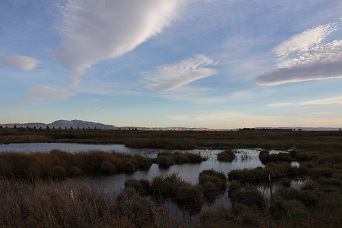 northerncalifornia clouds wetlands mountdiablo solanocounty suisunmarsh grizzlyislandroad