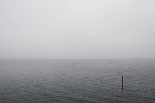 ocean mist water weather fog grey coast seaside sweden horizon shore malmö hav horisont grått fotosondag fs151018