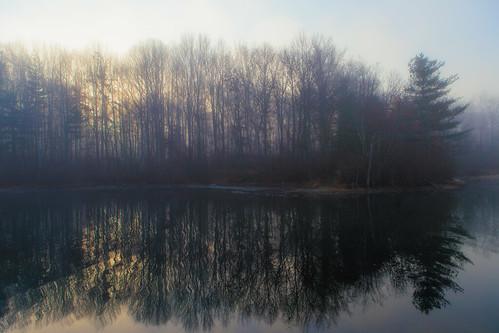 autumn trees mist lake fall nature water fog sunrise reflections landscape us newjersey unitedstates nj brunswick east eastbrunswick dallenbach dallenbachlake