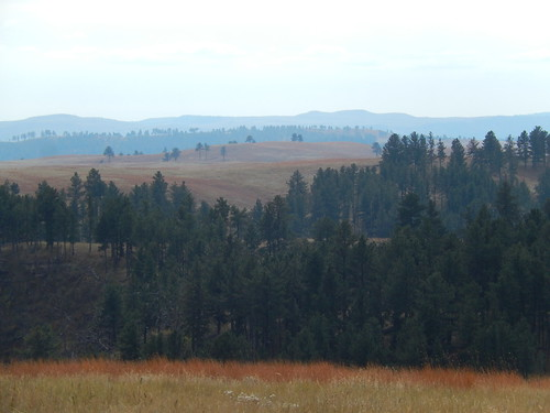 Custer State Park - 5