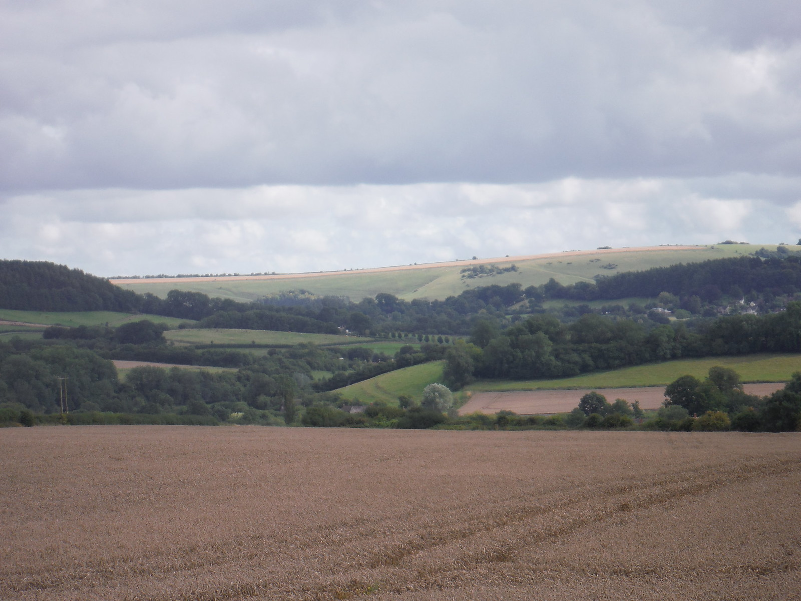 Castle Ditches Iron Age hillfort and Swallowcliffe Down SWC Walk 248 Tisbury Circular via Hindon