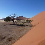 Čt, 03/29/2012 - 08:01 - Afrika 2012
