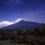 Út, 11/24/2009 - 19:03 - Kilimanjaro