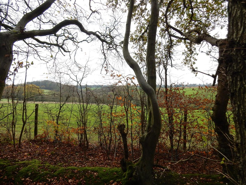 Monkton fringe Princes Risborough to Great Missenden