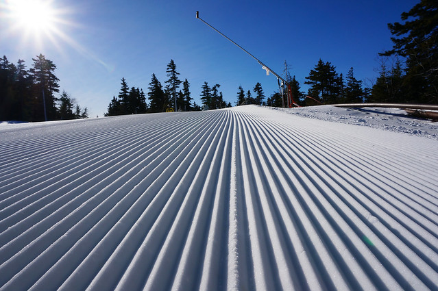 Blue skies, sunshine, and corduroy!