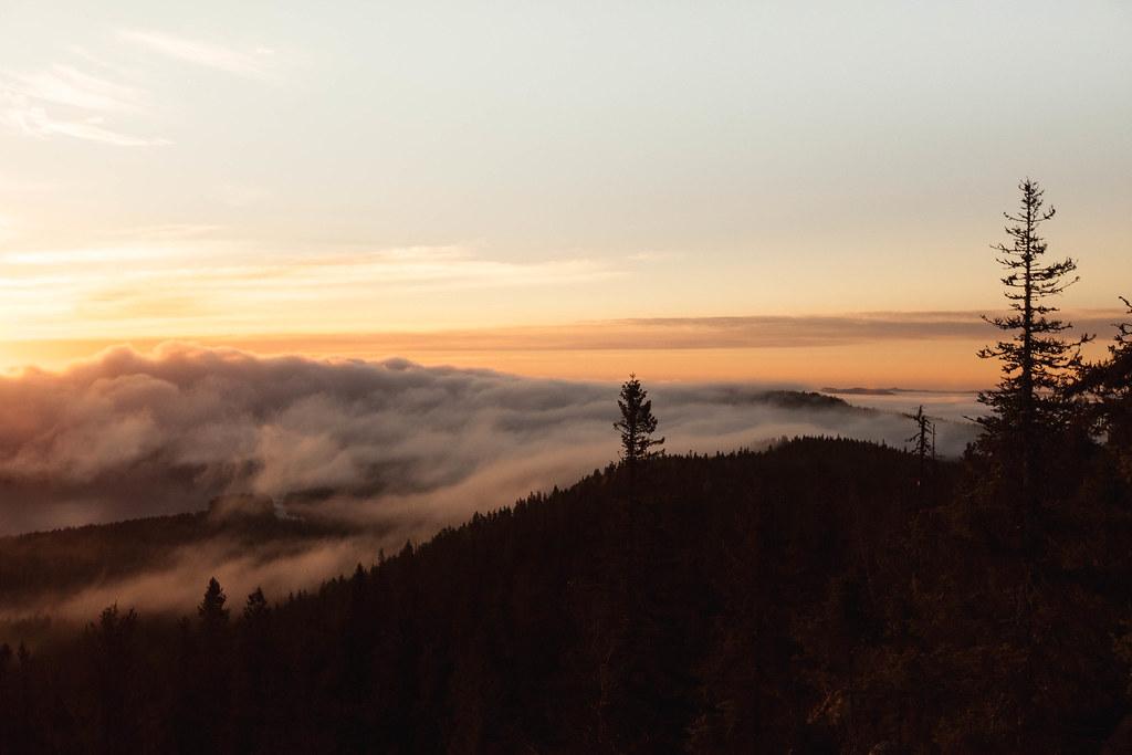 Koli Kolin kansallispuisto