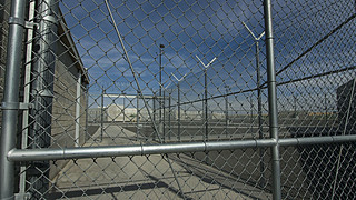 Prisoners Growing Sagebrush   by BLMOregon