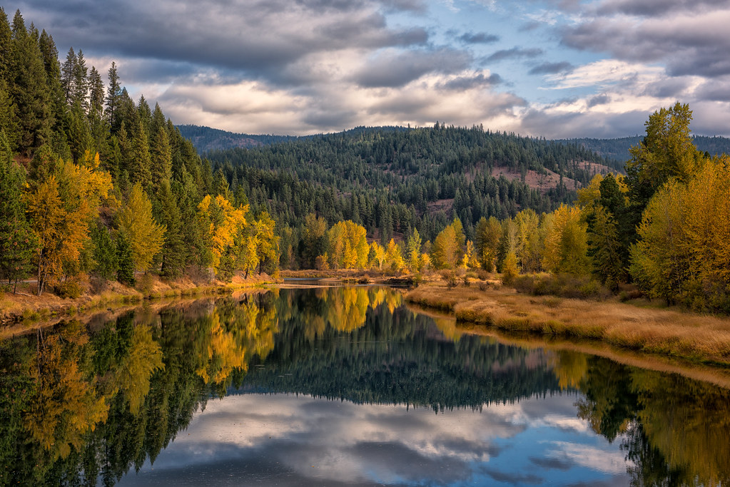 Autumn Along The Coeur Dalene River A View Of A Favorite