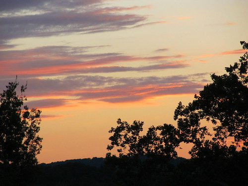 trees sunset sky nature landscape knoxville tennessee silhouettes hills victorashepark