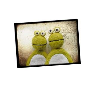 Zwei Froschen A51