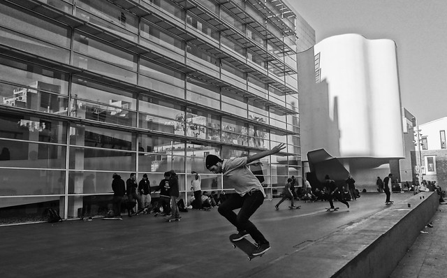 Skaters al MACBA