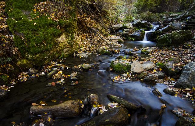 Aguas del río Alhama