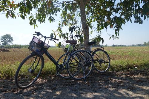 Fahrradtour - unsere Fahrräder