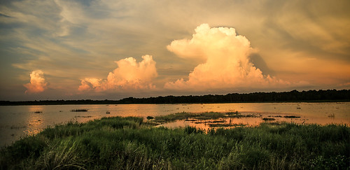 florida myakkariverstatepark uppermyakkalake water lake sunset clouds cloudscape thunderhead lakeshore marsh orange sky wyojones np