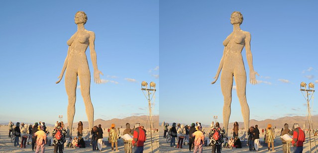 Burning Man 2015- R-Evolution 3D-Cross-View