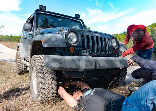 Black Jeep on a Trail   by nan palmero