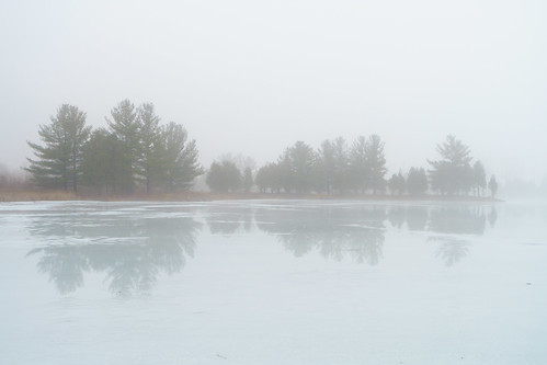 fog kitchener bloomingdale ontario canada ca tree reflection winter pond foggy ice